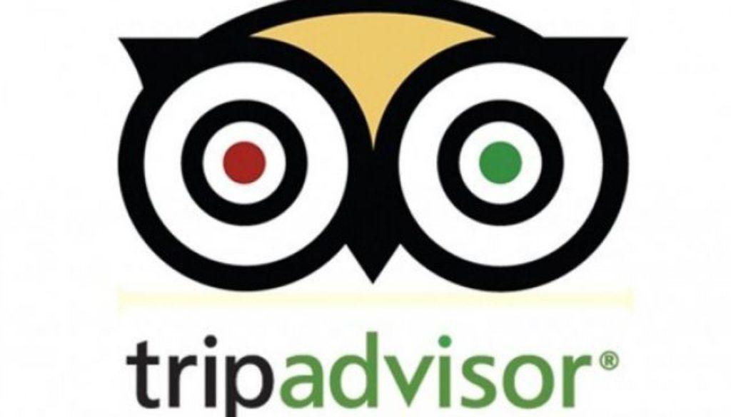 TripAdvisor Detailed Review