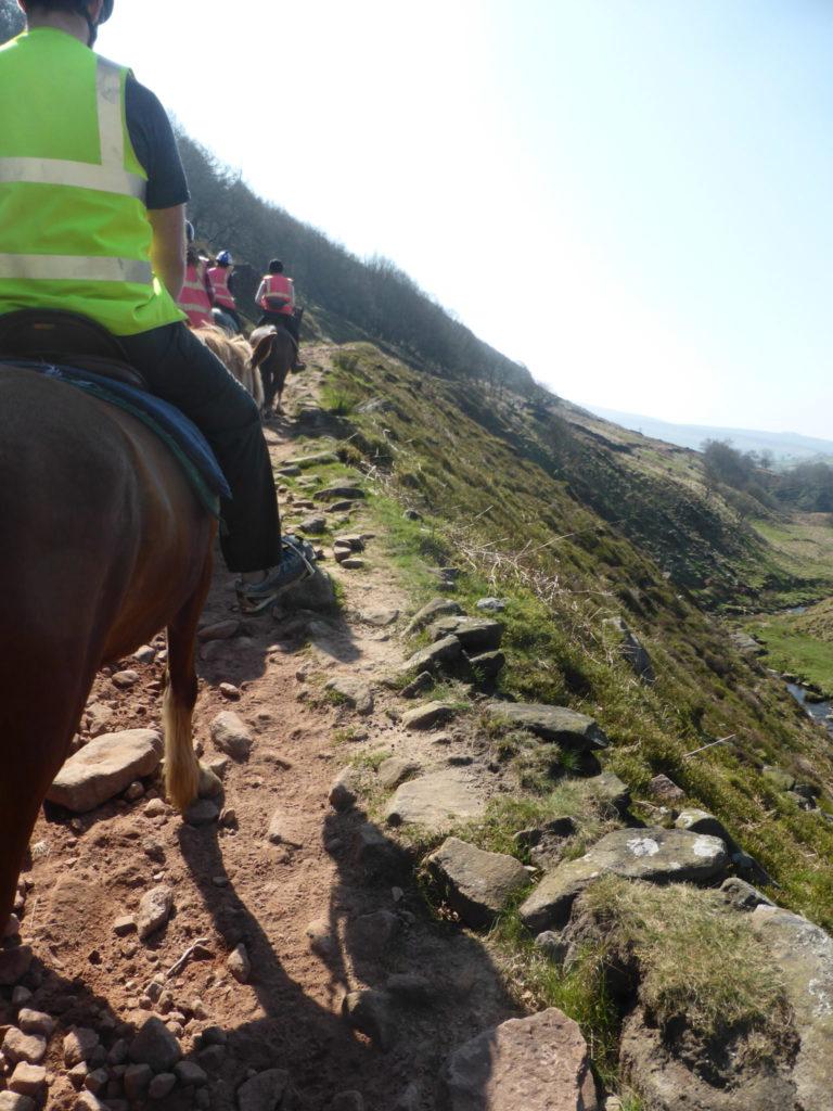Horseback Riding Northfield Farm