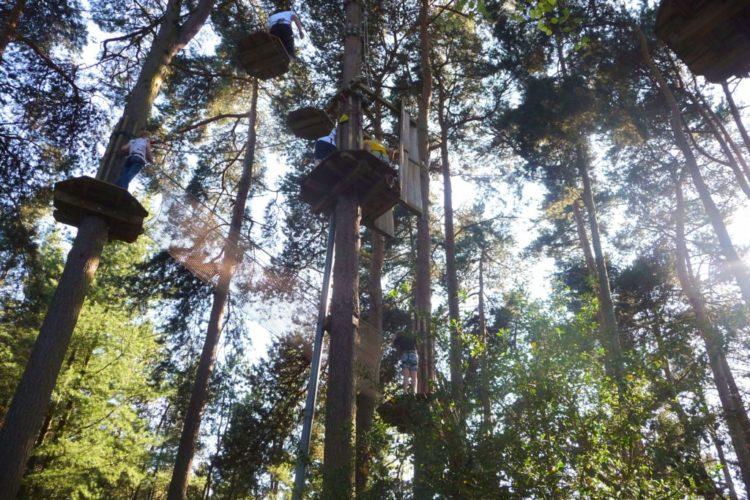 Romantic Guide Cheshire Go Ape Delamere Forest