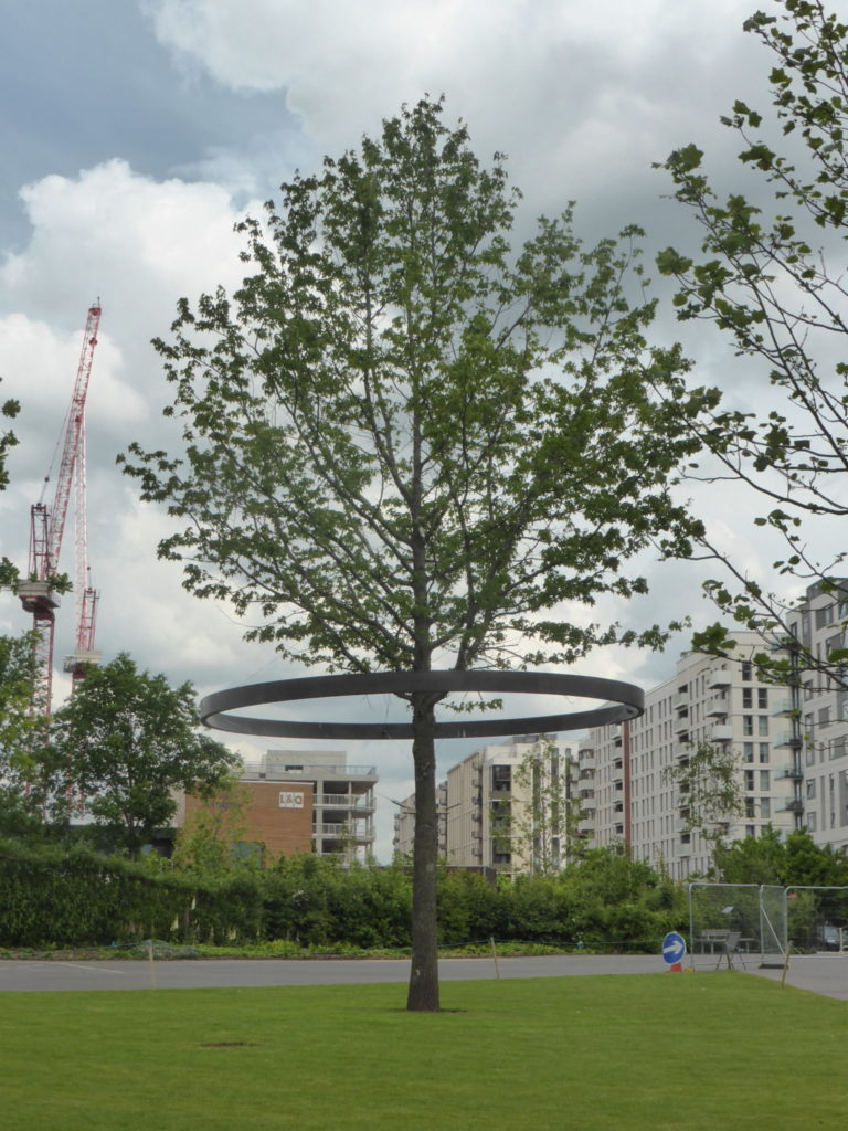 Queen Elizabeth Olympic Park History Trees