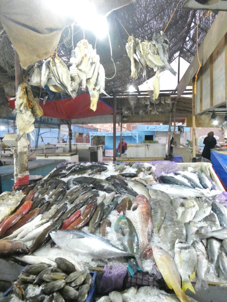 Fish Market - Hurghada, Egypt