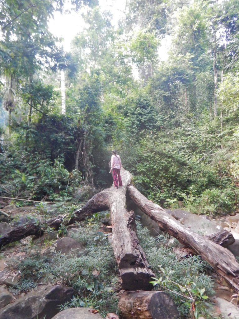 The Romantic Couples Travel Guide to Phuket, Jungle Experience, Khao Sok National Park, Thailand